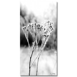 black-and-white vertical 10